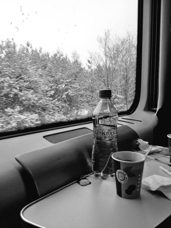 Train Back to Warsaw