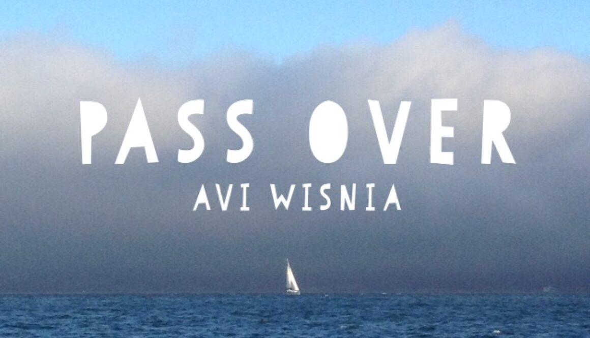 Pass Over Avi Wisnia cover image