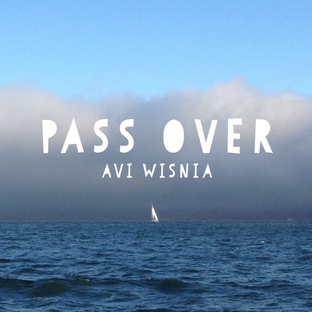 Pass Over Avi Wisnia cover image