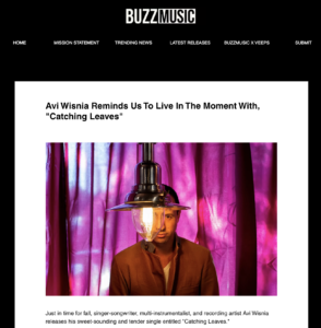 Buzz Music Feature Interview with Avi Wisnia Catching Leaves